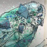 bird-close-up